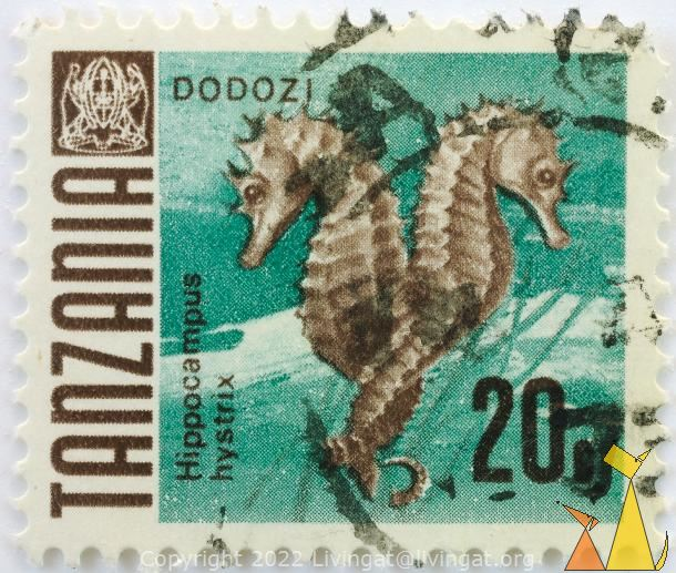 Mating Thorny Seahorses, Tanzania, stamp, coat of arms, fish, 20 c, Dodozi, Hippocampus hystrix