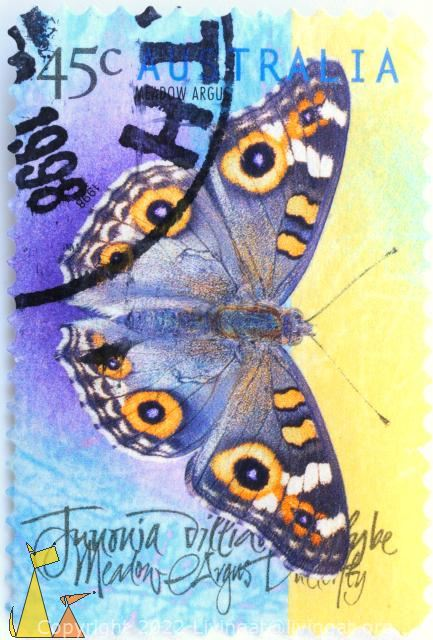 Meadow Argus, Australia, stamp, insect, butterfly, 1998, Tunonia, 45 c, Junonia villida