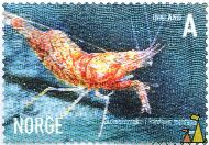 Montague Shrimp, Norge, Norway, stamp, shellfish, Innland, A, 2007, shrimp, Blomserreke, Pandalus montagui