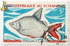 Moon fish, Republique du Tchad, Chad, stamp, fish, 3 F, postes, Citharinus latus, Maley