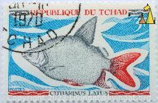 Moon fish, Republique du Tchad, Chad, stamp, fish, 3 F, postes, Citharinus latus, Maley, 1970