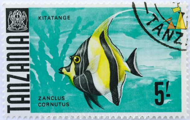 Moorish on Green, Tanzania, stamp, coat of arms, fish, 5, Kitatange, Zanclus cornutus
