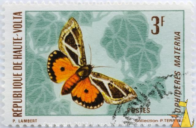 Moth on Green, Republique de Haute-Volta, Burkina Faso, stamp, insect, butterfly, Postes, Collectiom P Terrible, P Lambert, 3 F, Ophideres materna, Eudocima materna