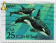 Mother Killer Whale, USA, stamp, mammal, whale, 1990, 25, mother, calf, Orcinus orca