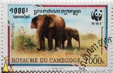 Mother and young Asian Elephants, Royaume du Cambodge, Cambodia, stamp, mammal, elephant, Postes, 1997, 1000 R, WWF, Vásárhelyi, Faune Protégée, Elephas maximus hirsutus, Elephas maximus