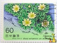 Mountain avens, Nippon, Japan, stamp, plant, flower, 60, Dryas octopetala var asiatica