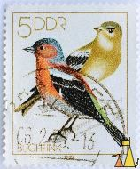 Mr and Mrs Chaffinch, DDR, Germany, stamp, bird, 1979, Buchfink, Gransee, 5, Fringilla coelebs