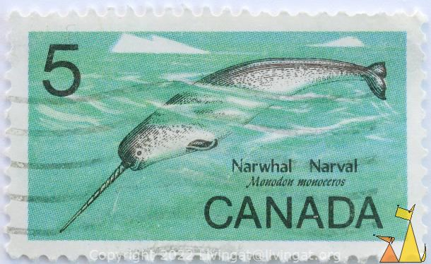 Narwhal, Canada, stamp, tusk, fish, whale, 5, Narval, Monodon monoceros, mammal