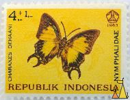Nawab Butterfly, Republik Indonesia, Indonesia, stamp, insect, butterfly, 1963, 4+1, Nymphalidae, Charaxes dehaani