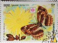 Neptis Pryeri on yellow flower, Etat du Cambodge, Cambodia, stamp, insect, butterfly, Postes, 1991, Philanippon'91, 5 R, Neptis pryeri
