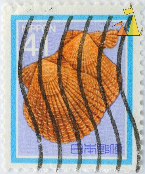 Noble Scallop, Nippon, Japan, stamp, shell, 41, Chlamys senatoria nobilis