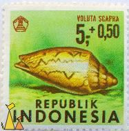 Noble Volute, Republik Indonesia, stamp, shell, green, 5+0.50, Voluta scapha, Cymbiola nobilis