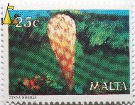 Noble pen shell, Malta, stamp, underwater, shell, 25 c, Pinna nobilis