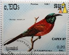 Northern Carmine Bee-eater, R.P. Kampuchea, Cambodia, stamp, bird, Merops nubicus, Northern Carmine Bee-eater, Capex'87, 1987, 0.20 Riel, Postes