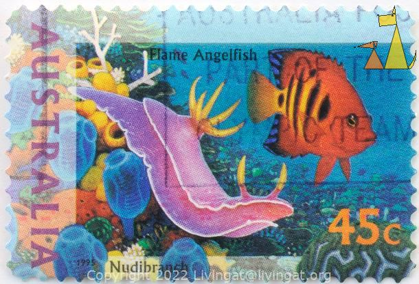 Nudi and Flame Angelfish, Australia, stamp, fish, nudibranch, 1995, 45 c, Centropyge loricula, Hypselodoris apolegma