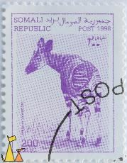 Okapi, Somali Republic, Somalia, stamp, mammal, Okapia johnstoni, 200 Sh.SO, Post, 1998