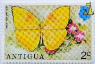 Orange-barred Sulphur, Antigua, Antigua and Barbuda, stamp, insect, butterfly, 2 c, Queen Elizabeth II, Phoebis philea