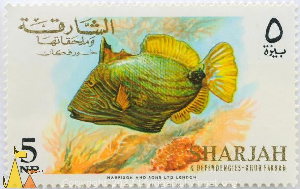 Orange-lined triggerfish, Sharjah and Dependencies - Khor Fakkan, Sharjah, stamp, fish, 5 NP, Harrison and Sons Ltd London, Balistapus undulatus