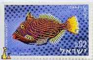 Orangestriped Triggerfish, Israel, stamp, fish, 0.02, blue