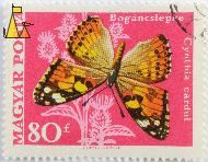 Painted Lady, Hungary, stamp, insect, butterfly, Vertel Jozsef, Magyar, Posta, Vanessa cardui, Cynthia cardui, Bogancslepke, 80 f, Painted Lady