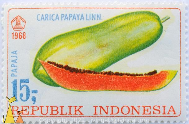 Papaja, Republik Indonesia, Indonesia, stamp, fruit, plant, 1968, 15, Carica papaya linn, Carica papaya