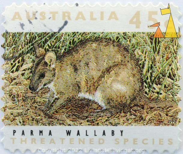Parma Wallaby, Australia, stamp, mammal, 45 c, treatened species, 1992, Macropus parma