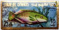 Parrot fish, Umm al Qiwain, UAE, stamp, fish, Umm al Qiwain, 25, dh, Air Mail, Parrot fish