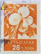Peaches, Bulgaria, stamp, tree, plant, fruit, 28 Ct, Prunus persica