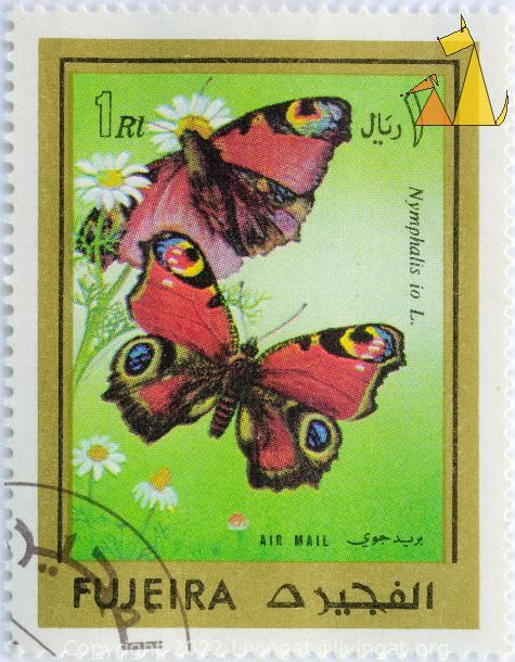 Peacock, Fujeira, Fujairah, UAE, stamp, insect, butterfly, Inachis io, Nymphalis io, Air Mail, 1 Rl