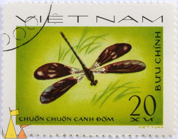 Peacock Jewel, Viêt Nam, Vietnam, stamp, insect, dragonfly, Buu chinh, 20 xu, Chuon chuon canh dom, Viet tuan, Aristocypha fenestrella