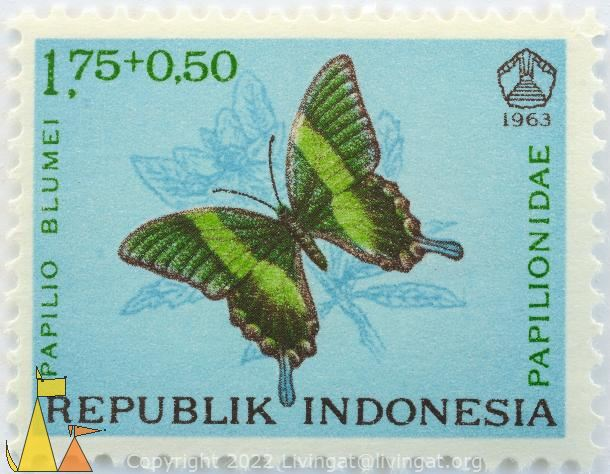 Peacock Swallotail, Republik Indonesia, Indonesia, stamp, insect, butterfly, 1963, 1.75+0.50, Papilioniade, Papilo blumei