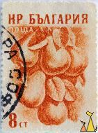 Pears, Bulgaria, stamp, fruit, plant, Pyrus communis, 8 Ct