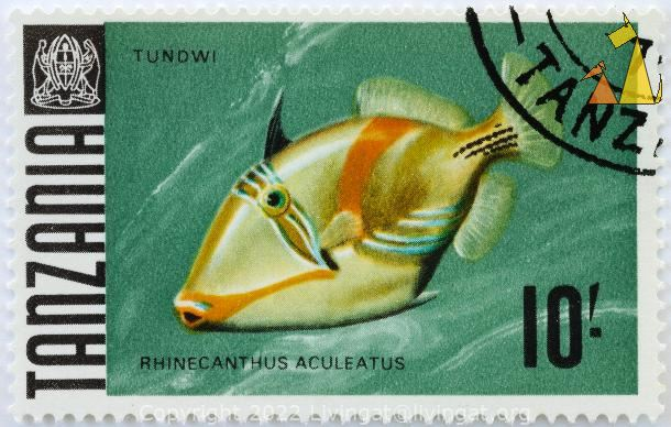 Picasso Triggerfish on Green, Tanzania, stamp, coat of arms, fish, 10, Tundwi, Rhinecanthus aculeatus