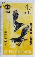 Pied Fantails, Republik Indonesia, Indonesia, stamp, bird, 4+1, 1964, Sikatan, Rhipidura javanica
