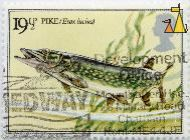 Pike, UK, stamp, fish, 19½ p, Queen Elizabeth II, Esox lucius