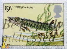 Pike, UK, stamp, fish, 19½ p, Queen Elizabeth II, Esox lucius, Be propperly addressed