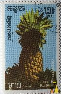 Pineapple, R.P. Kampuchea, Cambodia, stamp, plant, fruit, Ananas comosus, Postes, 2 Riels, Ananas, 1986