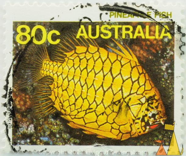 Pineapple fish, Australia, stamp, fish, 80 c, Cleidopus gloriamaris
