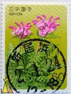 Pink Pedicularis, Nippon, Japan, stamp, plant, flower, 60, Pedicularis apodochila