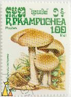 Poison pies, R.P. Kampuchea, Cambodia, stamp, plant, mushroom, Postes, 1.00 Riel, 1985, Hebeloma crustuliniforme