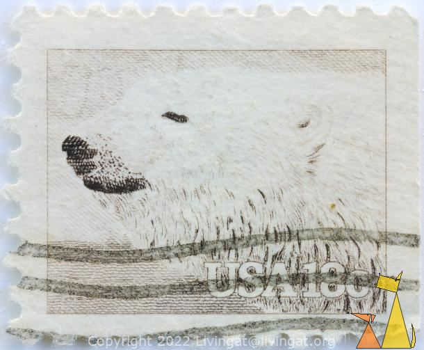 Polar Bear Portrait, USA, stamp, mammal, bear, 18 c, Ursus maritimus