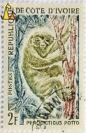 Potto, Republique de Cote D'Ivorie, Ivory Coast, stamp, mammal, J Combet, Postes, 2 F, Perodicticus potto