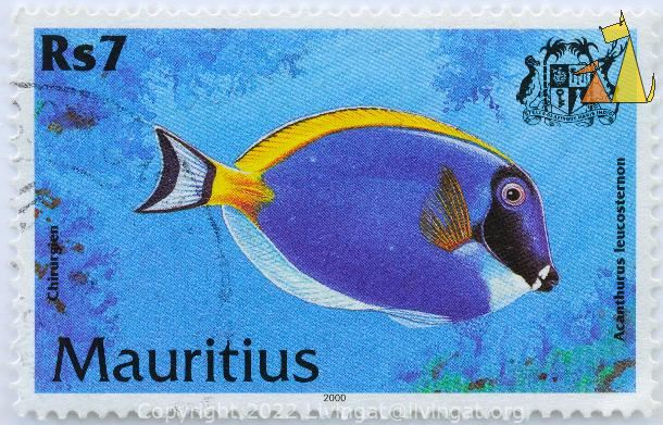 Powder Blue Tang, Mauritius, stamp, fish, coat of arms, dodo bird, 2000, Chirurgien, 7 Rs, Acanthurus leucosternon