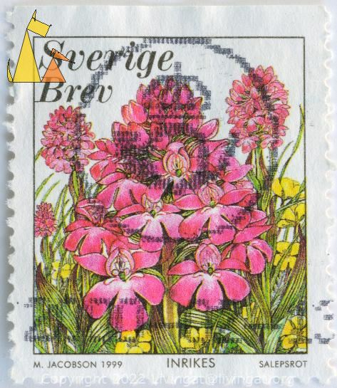 Pyramidal orchid, Sverige, Sweden, stamp, plant, flower, M Jacobson, 1999, inrikes, Salepsrot, brev, orchid, Anacamptis pyramidalis