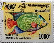 Queen angelfish, Royaume du Cambodge, Cambodia, stamp, fish, Postes, Poissons, 1995, 1000 R, Holocanthus ciliaris, Holacanthus ciliaris