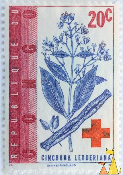 Quinine bark, Republique du Congo, Congo, stamp, plant, flower, red cross, 20 c, VN, Enscheds, Holland, dV, Cinchona ledgeriana, Cinchona calisaya