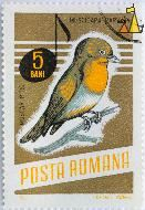 Red-breasted Flycatcher, Romana, Romania, stamp, bird, note, Posta, Muscar Pitic, 5 Bani, 1966, I Druga, G Bozianu, Muscicapa parva, Ficedula parva, gold
