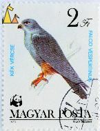 Red-footed Falcon, Magyar, Hungary, stamp, bird, bird of pray, 1983, Posta, Szücs Erzsébet, WWF, Panda, Kek Vercse, 2 Ft, Falco vespertinus
