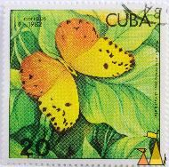 Red-splashed Sulphur, Cuba, stamp, insect, butterfly, correos, 1982, Herrich, Schäeffer, Phoebis avellaneda