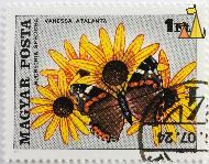 Red Admiral on Rudbeckia, Magyar, Hungary, stamp, insect, butterfly, Forgacs M, Posta, 1 Ft, 1980, Vanessa atalanta, Rudbeckia speciosa